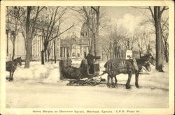 Horse Sleighs On Dominion Square