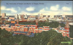 The University Of Tampa And Skyline