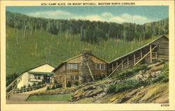 Camp Alice On Mount Mitchell