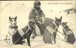 Alaska Musker And His Dog Team