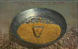 A $6000.00 Pan Of Gold Nuggets