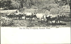 The Old Way Of Logging Postcard