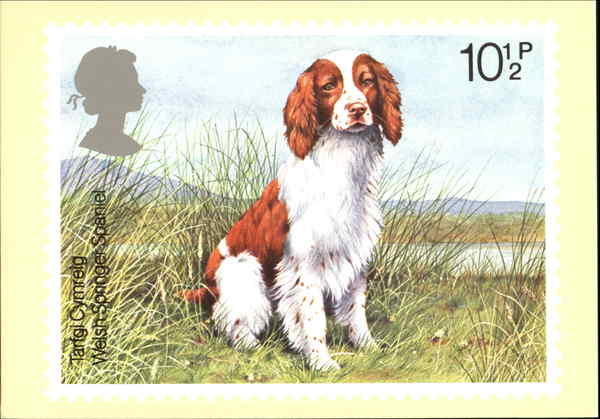 Welsh Springer Spaniel England Dogs First Day Issue Cards