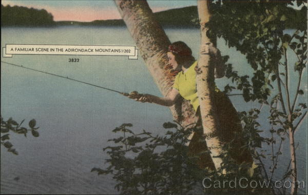 A Familiar Scene In The Adirondack Mountains:1202 Fishing