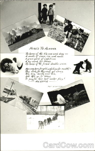 Here's To Alaska Poem