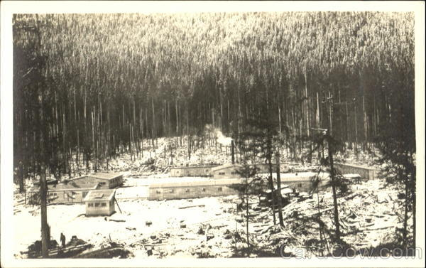 Logging Camp Alaska