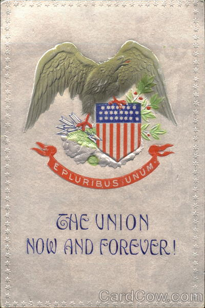 The Union Now And Forever! Patriotic