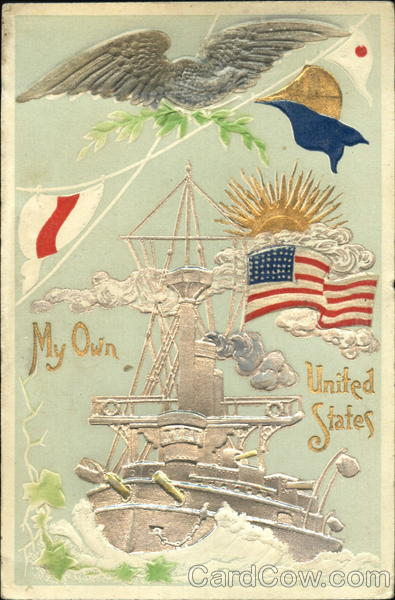 My Own United States Patriotic Navy