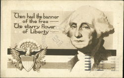 Then Hail The Banner Of The Free The Starry Flower Of Liberty