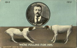 Teddy Roosevelt 1912 Campaign