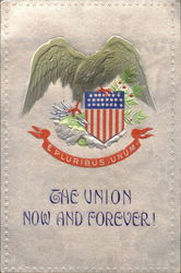 The Union Now And Forever!