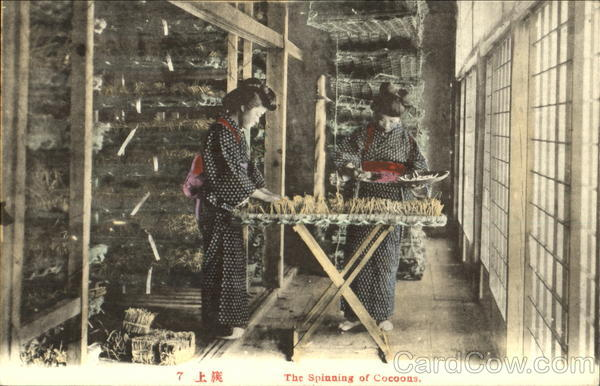 The Spinning Of Cocoons Japan