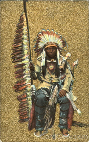 Indian Cheif Native Americana