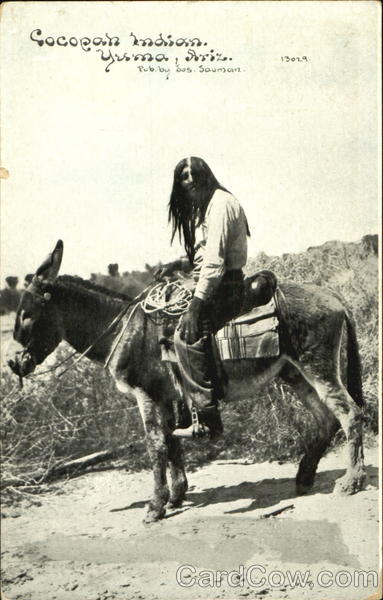 Cocopah Indian Yuma Arizona Native Americana