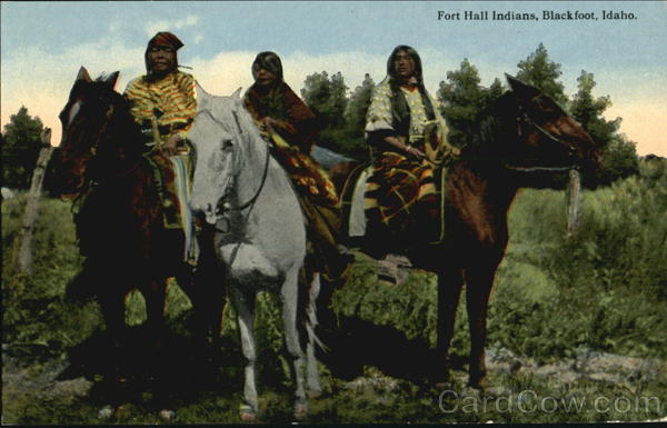 Fort Hall Indians Blackfoot Idaho Native Americana