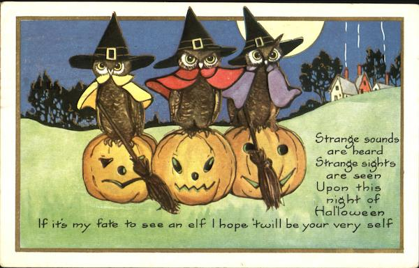 Owls Witches  on JOLS Halloween