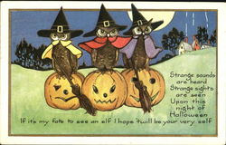 Owls Witches  on JOLS