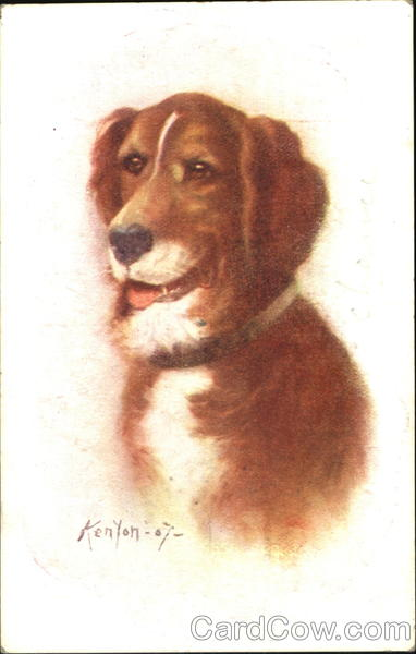Dog Portrait Henry Kenyon Dogs