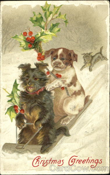 Christmas Greetings Dogs