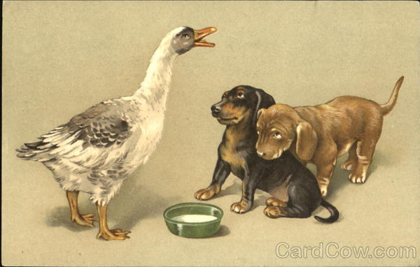 Goose and Dogs