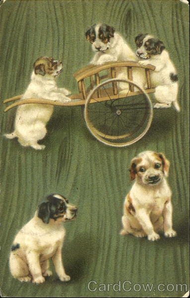 Five puppies, three of which are playing with a cart Brefkort Germany