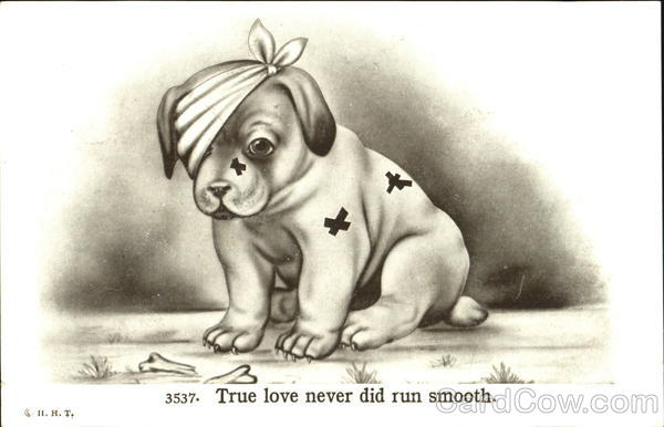 True Love Never Did Run Smooth Dogs