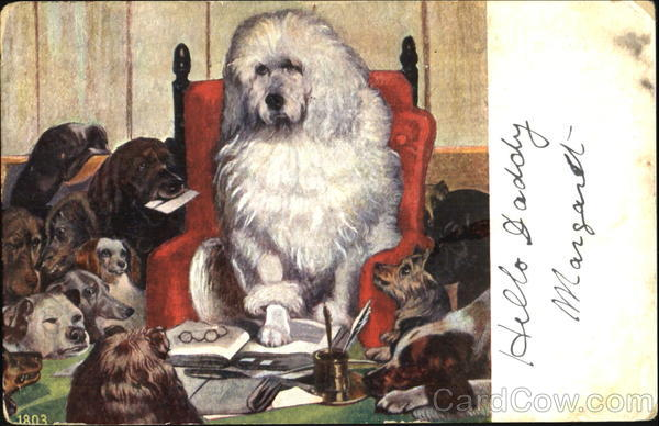 Dogs At A Desk