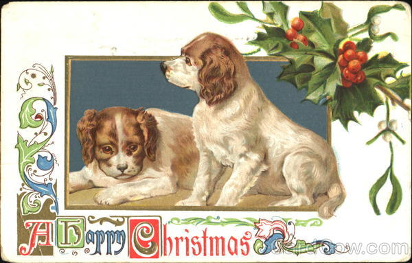 A Happy Christmas Dogs