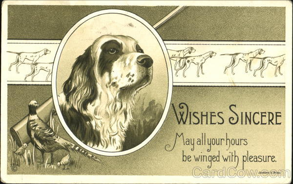 Wishes Sincere Dogs