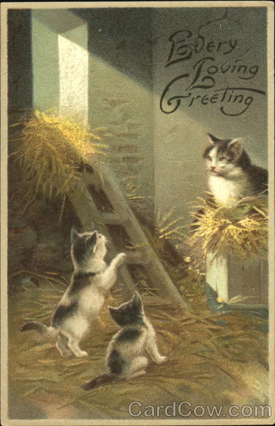 Every Loving Greeting Cats