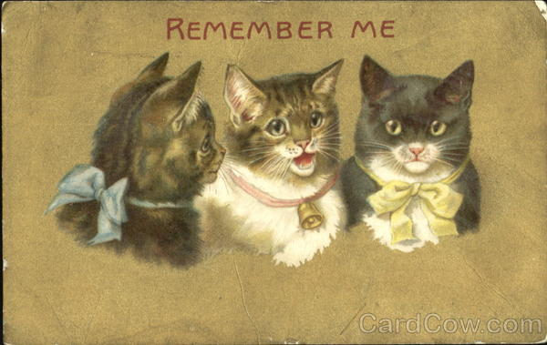Remember Me Cats