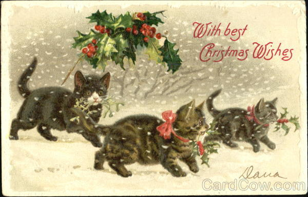 With Best Christmas Wishes Cats