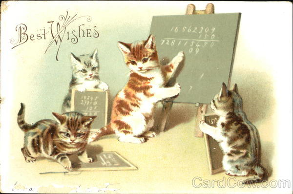 Best Wishes Cats