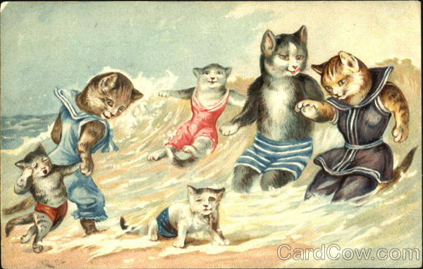 Cats in Bathing Suits Playing at the Beach Swimsuits & Pinup