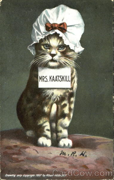Mrs. Kaatskill Cats