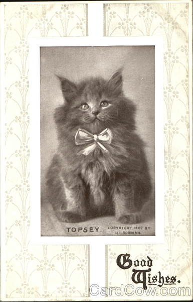 Topsey Good Wishes Cats
