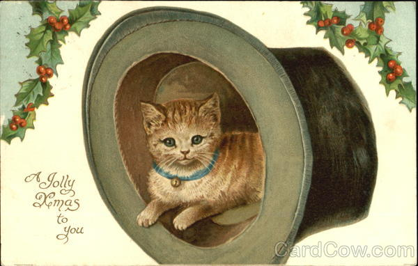 A Jolly Xmas To You Cats