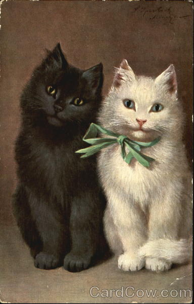 Black Kitten with White Kitten in Green Bow Cats
