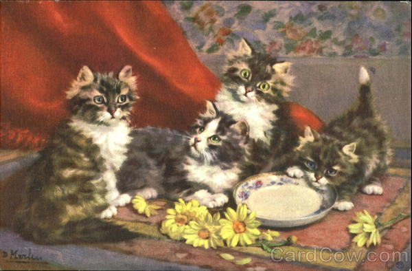 Kittens with Saucer Cats