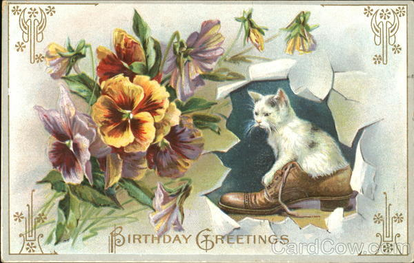 Birthday Greetings Cats