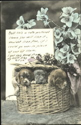 Puppies in a flower basket