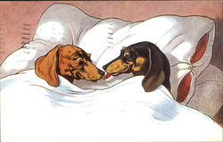 Dogs in Bed