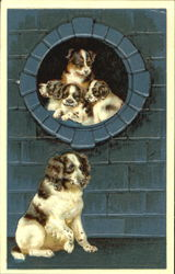 Puppies in Window
