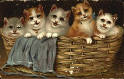 Five playful kittens in a basket
