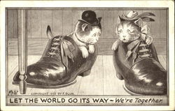 Kittens in Shoes