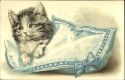 Kitten on Blue Pillow