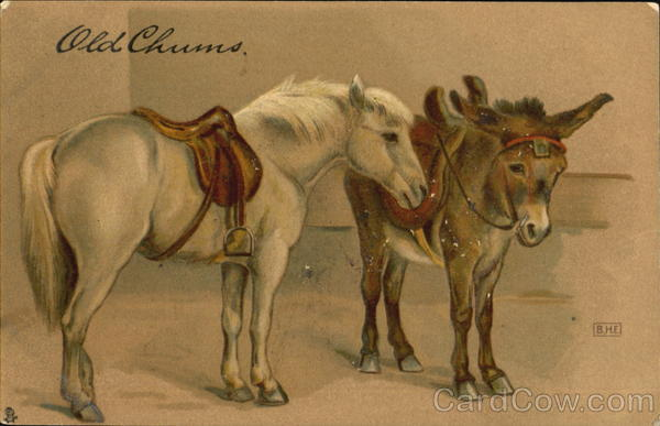 Old Chums Horses