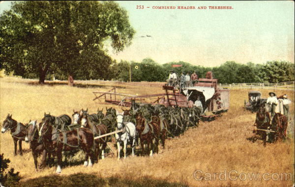 Combined Header And Thresher Horses Farming