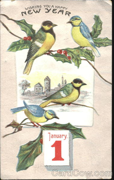 Wishing You A Happy New Year Birds