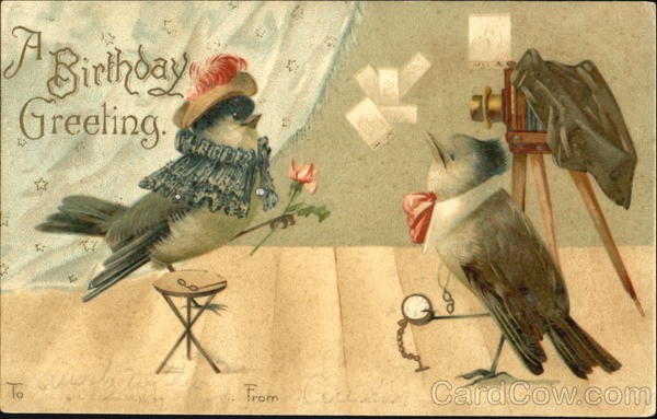 A Birthday Greeting Birds